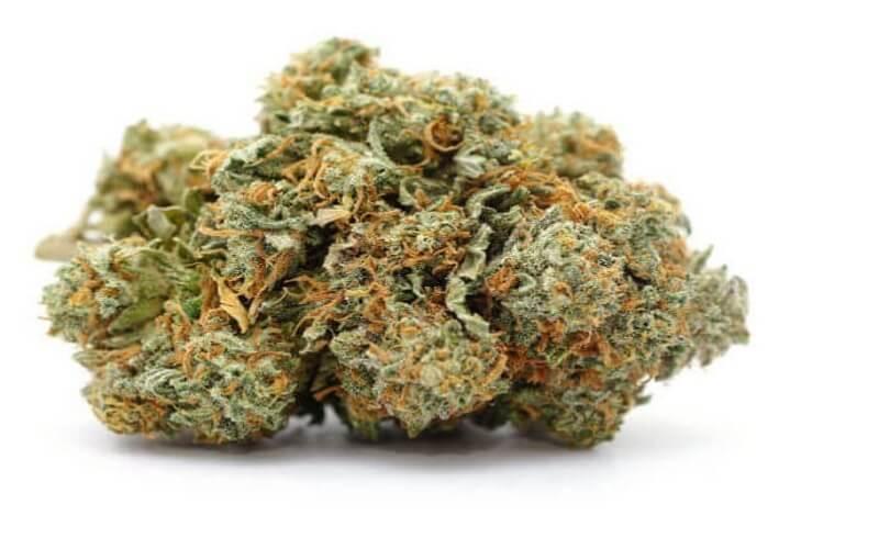 Nerolidol Effects in Cannabis