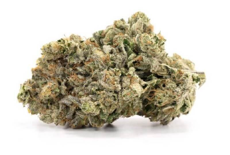 What's an Indica Strain?